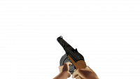 Attached Image: ppsh.png