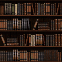 Attached Image: bookshelf8bit.png