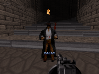 Attached Image: duke0012.png