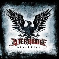 Attached Image: AlterBridge_Blackbird.JPG